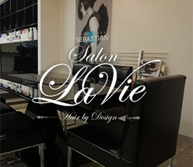 Salon Lavie