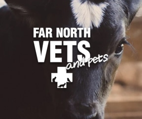 Far North Vets